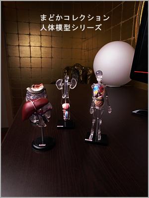 人体模型01.jpg
